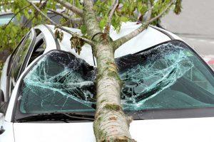 כתב תביעה נזקי רכוש לרכב